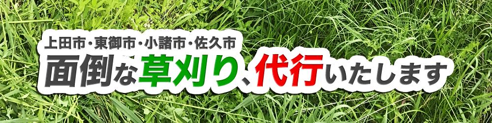 上田市・東御市・小諸市・佐久市の面倒な草刈り、代行いたします!